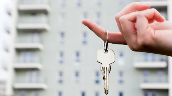 Could This Be Your Key To An Auckland House?