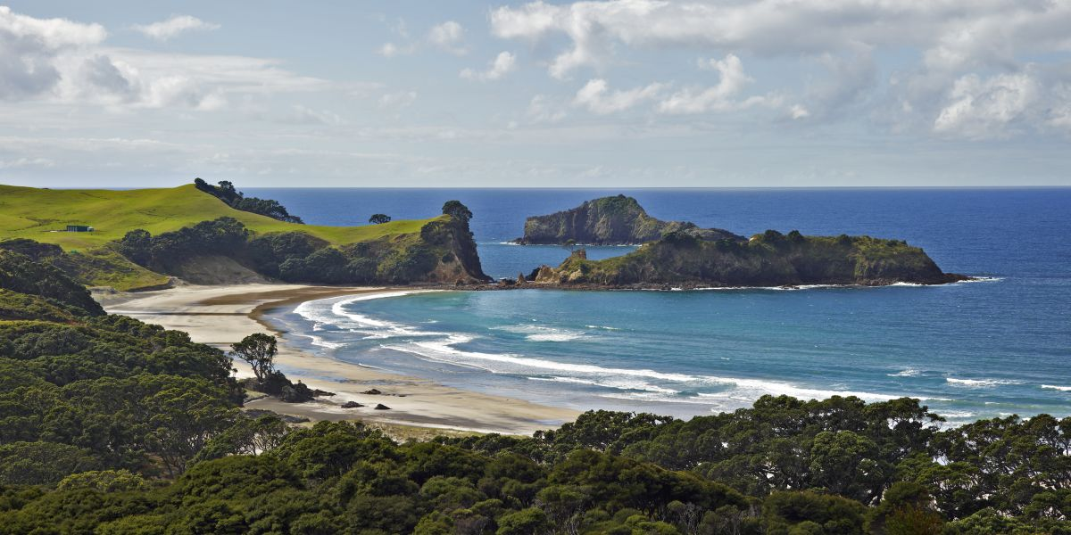 Great Barrier Island. New Zealand.